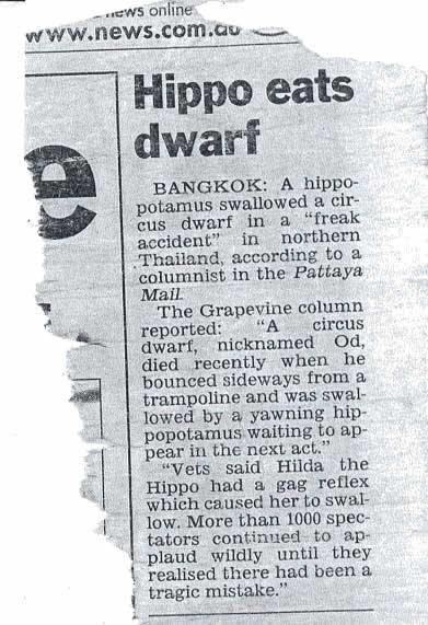 hippo eats a dwarf